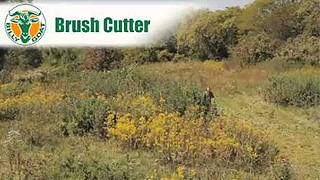 Outback Brushcutter | Billy Goat